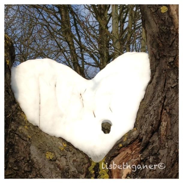 Snowheart...loveheart...broken heart?Photo: Lisbeth Ganer