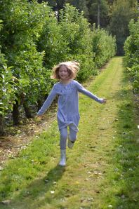 applepicking