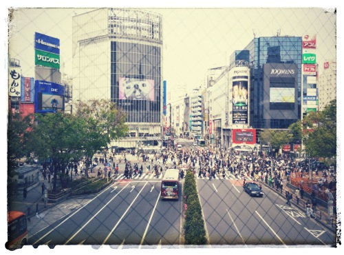 Shibuya crossing. Photo: Silvia La Rosa