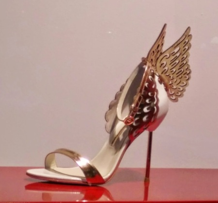 luxury_shoe