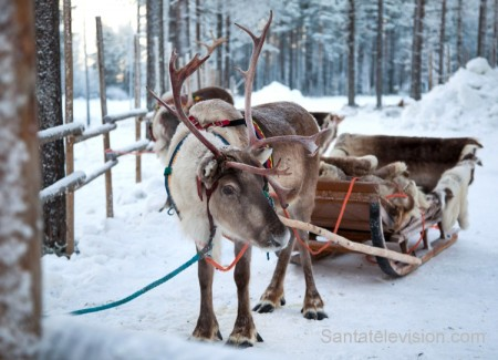Photo credit: http://www.santatelevision.com/